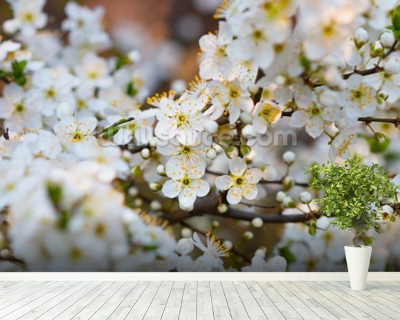 White Spring Flower Blossom mural wallpaper room setting