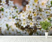 White Spring Flower Blossom mural wallpaper in-room view