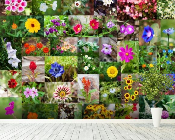 Summer Flower Collage wall mural room setting
