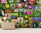 Summer Flower Collage wall mural living room preview