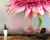 Pink Flower Blossom mural wallpaper kitchen preview