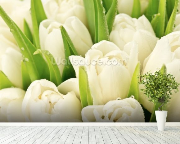 Tulipany wallpaper mural room setting