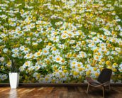 Field of Camomiles wall mural kitchen preview