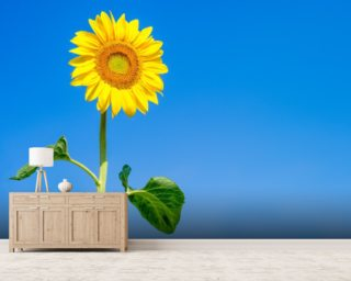 Sunflower Blue Sky mural wallpaper