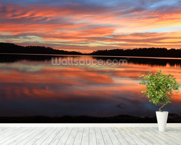 Sunrise Reflections Narrabeen Lakes wall mural room setting