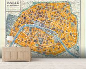 Map of Paris 1926 wall mural living room preview
