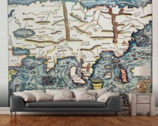 Antique German Map of Asia wallpaper mural