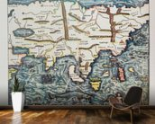 Antique German Map of Asia wallpaper mural kitchen preview