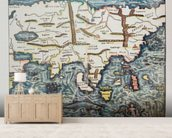 Antique German Map of Asia wallpaper mural living room preview