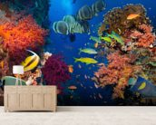 Coral and Fish mural wallpaper living room preview