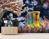 Copperband Butterflyfish wall mural living room preview
