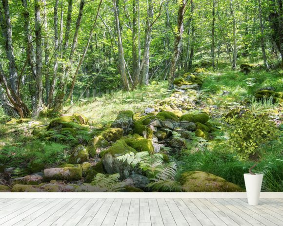 Green Spring Forest wall mural room setting