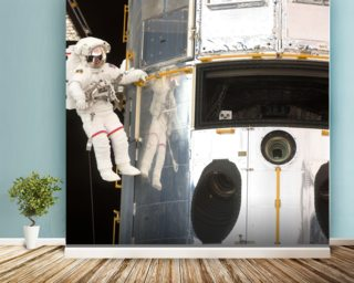 Hanging Out With Hubble (2009) wall mural