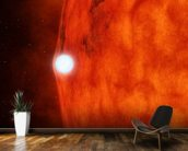 Dead Star Acts Like Magnifying Glass mural wallpaper kitchen preview