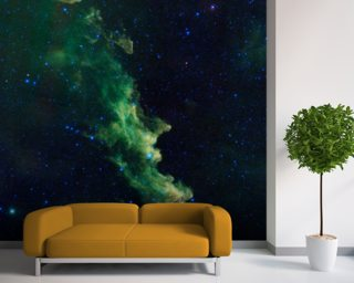 'Witch Head' Brews Baby Stars wall mural