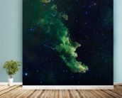 'Witch Head' Brews Baby Stars wall mural in-room view