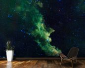 'Witch Head' Brews Baby Stars wall mural kitchen preview
