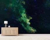 'Witch Head' Brews Baby Stars wall mural living room preview