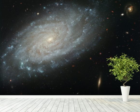 Spiral Galaxy NGC 3370, Home to Supernova Seen in 1994 mural wallpaper room setting