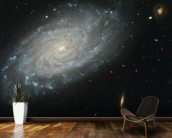 Spiral Galaxy NGC 3370, Home to Supernova Seen in 1994 mural wallpaper kitchen preview