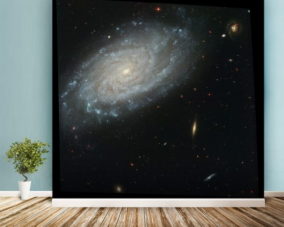 Spiral Galaxy NGC 3370, Home to Supernova Seen in 1994 wall mural room setting