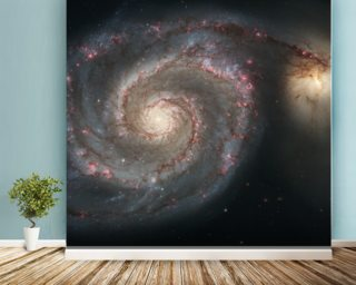 Out of This Whirl: the Whirlpool Galaxy (M51) and Companion Galaxy wall mural