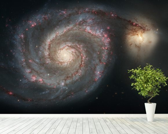 Out of This Whirl: the Whirlpool Galaxy (M51) and Companion Galaxy wall mural room setting