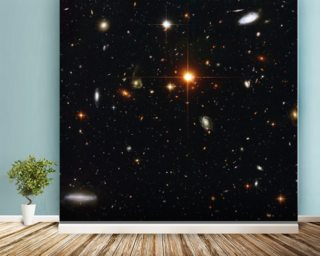 A Zoo of Galaxies mural wallpaper