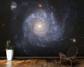 Full ACS Field of NGC 1309 wall mural kitchen preview