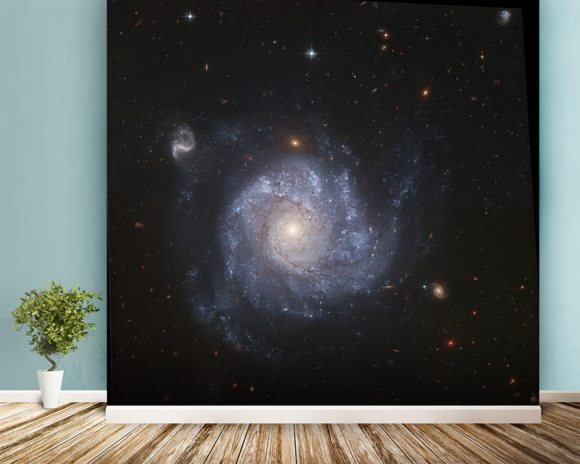 Hubble Snaps Images of a Pinwheel-Shaped Galaxy wallpaper mural room setting