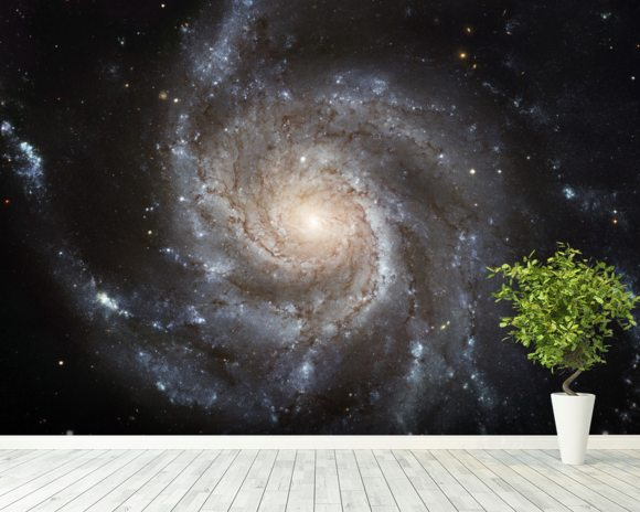 Giant Spiral Disk of Stars wall mural room setting