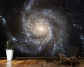 Giant Spiral Disk of Stars wall mural kitchen preview