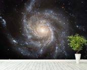Giant Spiral Disk of Stars wall mural in-room view