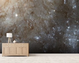 A Detailed Look at Spiral Galaxy M101 Wall Mural Wall Murals Wallpaper