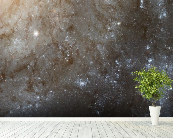 A Detailed Look at Spiral Galaxy M101 wallpaper mural room setting