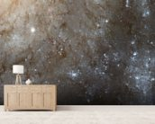 A Detailed Look at Spiral Galaxy M101 wallpaper mural living room preview