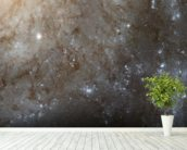 A Detailed Look at Spiral Galaxy M101 wallpaper mural in-room view