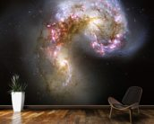 The Antennae Galaxies/NGC 4038-4039 mural wallpaper kitchen preview