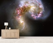 The Antennae Galaxies/NGC 4038-4039 mural wallpaper living room preview