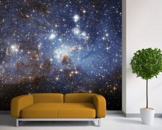 Star-Forming Region LH 95 in the Large Magellanic Cloud wallpaper mural
