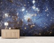Star-Forming Region LH 95 in the Large Magellanic Cloud wallpaper mural living room preview
