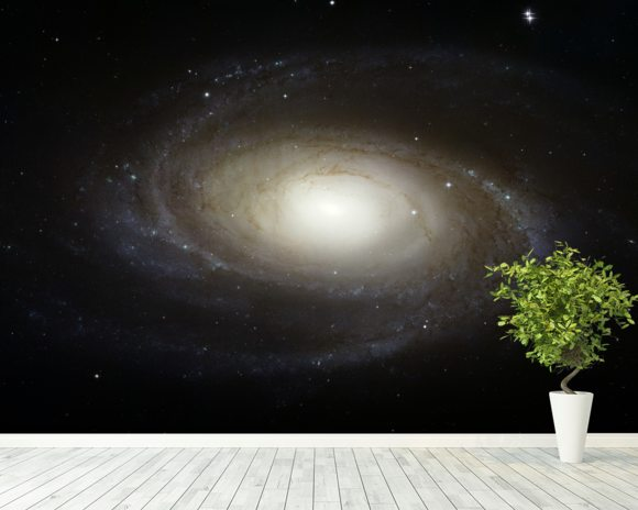 Grand Design Spiral Galaxy M81 wallpaper mural room setting