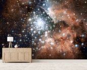 Full Hubble ACS Image of NGC 3603 wall mural living room preview
