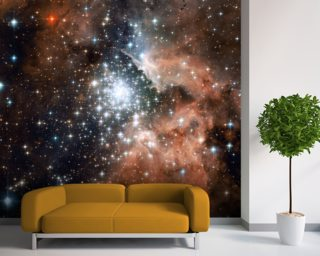 Star Cluster Bursts into Life in New Hubble Image wallpaper mural