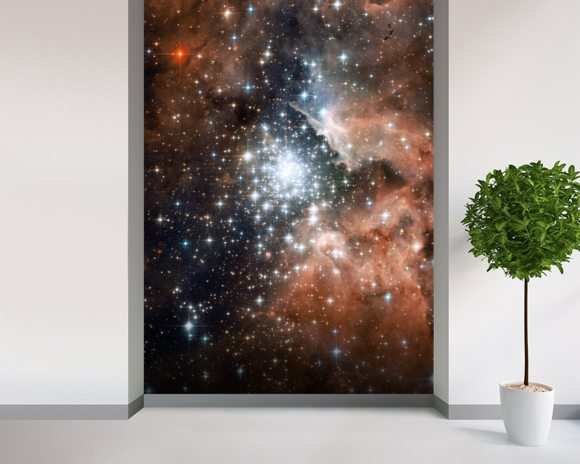 Star Cluster Bursts into Life in New Hubble Image wallpaper mural room setting