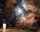 Star Cluster Bursts into Life in New Hubble Image wallpaper mural kitchen preview