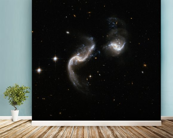 Hubble Interacting Galaxy Arp 256 mural wallpaper room setting
