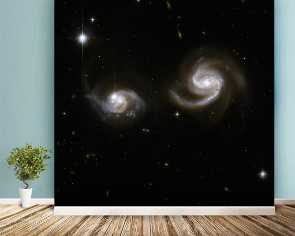 Hubble Interacting Galaxy NGC 6786 wallpaper mural room setting