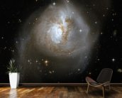 Hubble Interacting Galaxy NGC 3256 wallpaper mural kitchen preview