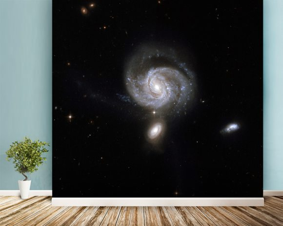 Hubble Interacting Galaxy NGC 7674 wallpaper mural room setting
